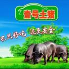 广东壹号食品股份有限公司