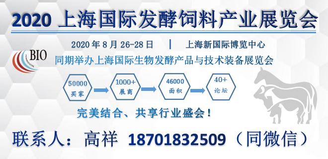 2020上海国