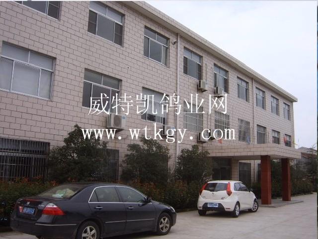 3公司办公大楼a.JPG